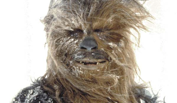 Chewbacca-Photo