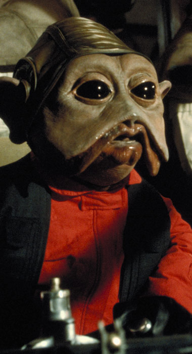 niennunb_detail