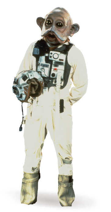 rebel-pilots_detail